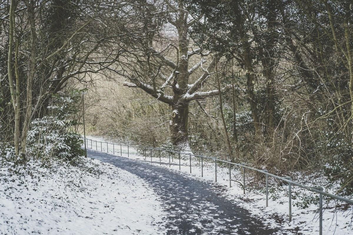 Failing Snow
