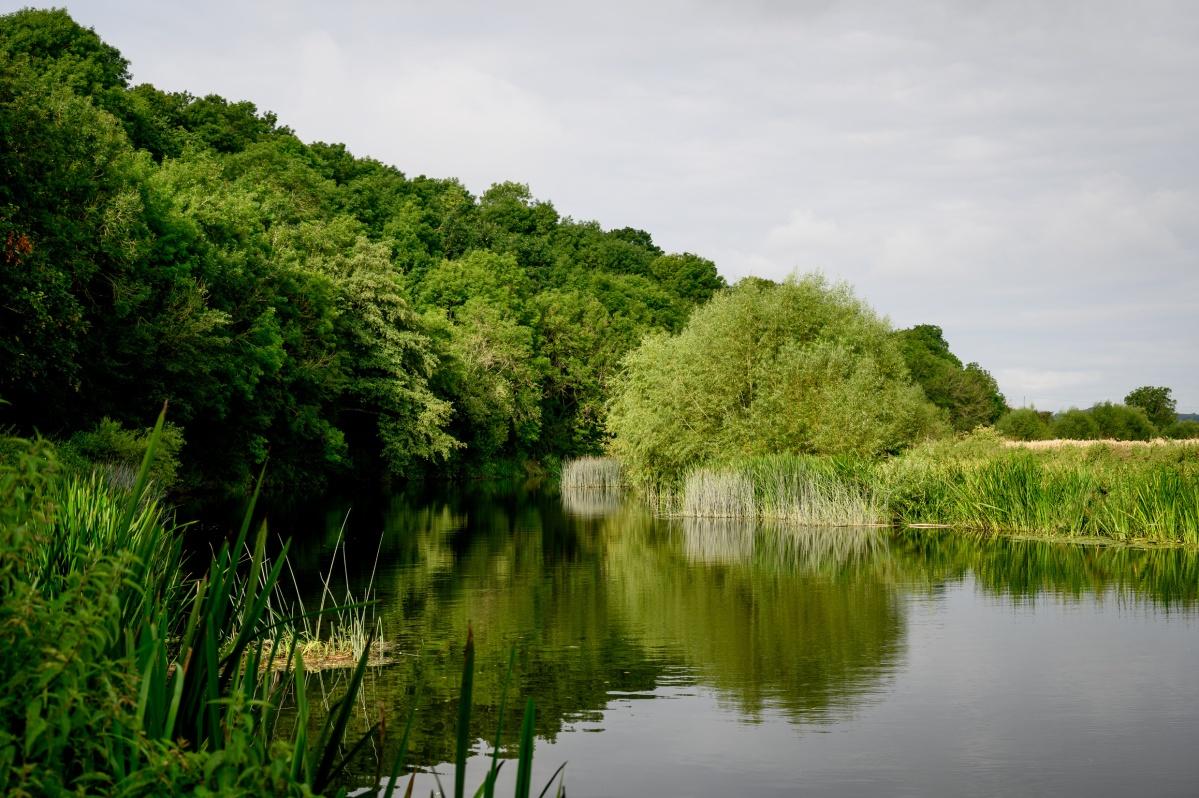 The River RunsDeep